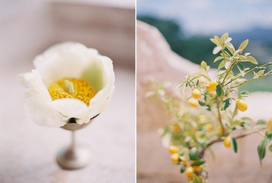 Sposto Photography_Blog_0245